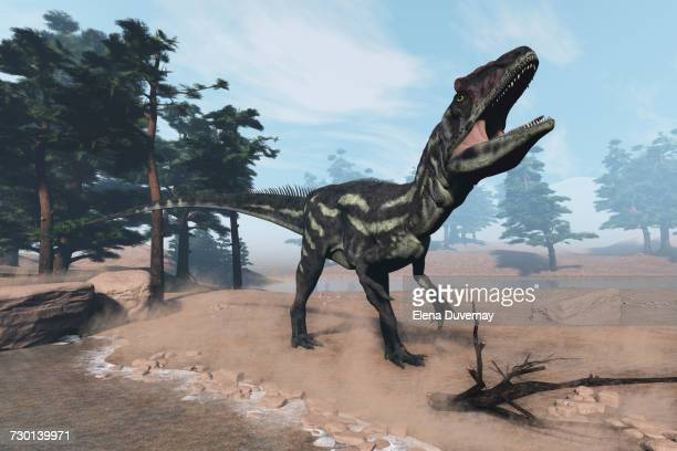 Allosaurus dinosaur walking and roaring on the shorefront next to pine trees by day - 3D render