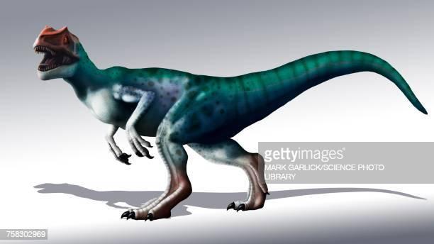 Allosaurus, illustration