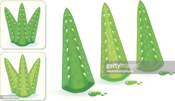 AloeVera bagages (3 colorvarios).