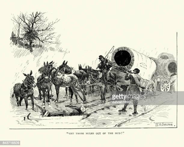 ilustraciones, imágenes clip art, dibujos animados e iconos de stock de guerra civil americana, vagones de transporte chupan en el barro - mula