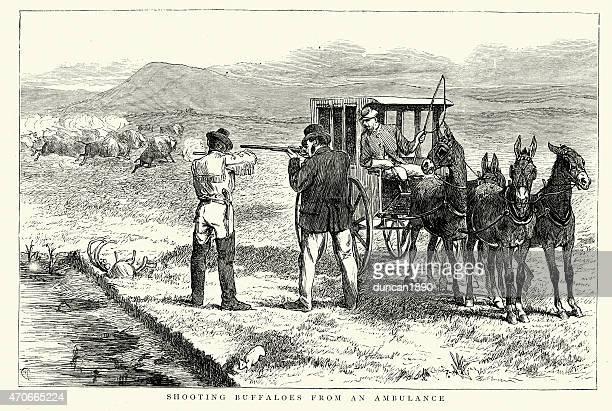 American Far West - Hunting Buffaloes 1874