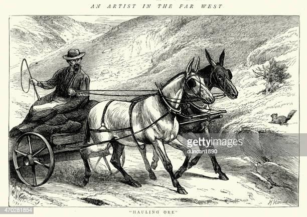ilustraciones, imágenes clip art, dibujos animados e iconos de stock de american lejano oeste-miner hauling mineral - mula