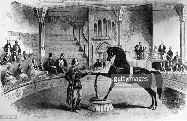 American trick horse Black Eagle performing before Queen Victoria and her family at the 'Great United States Circus' at Leicester Square in London...