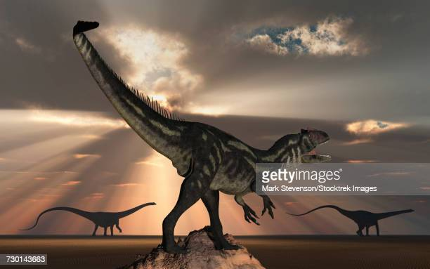 An Allosaurus watching a pair of large Diplodocus dinosaurs pass in the distance.