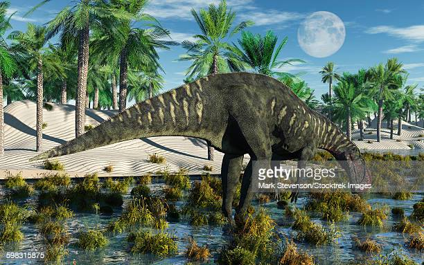 an altirhinus dinosaur during the cretaceous period of modern day asia. - hadrosaurid stock illustrations, clip art, cartoons, & icons