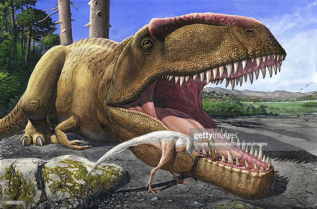 An Alvarezsaurid bird cleans the mouth of a Giganotosaurus carolinii dinosaur. : stock illustration