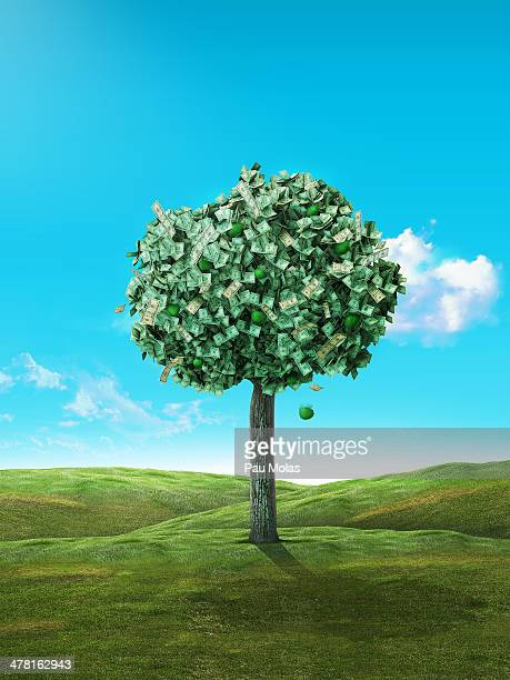 an apple falling from a money tree - money tree stock illustrations, clip art, cartoons, & icons
