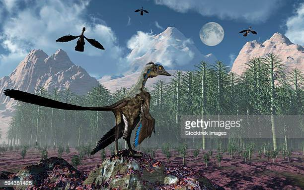 An Archaeopteryx bird-like dinosaur standing at the edge of a forest while the flock flies above.