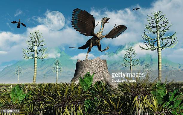 ilustraciones, imágenes clip art, dibujos animados e iconos de stock de an archaeopteryx bird-like dinosaur takes flight from atop a tree stump during the jurassic period. - triásico