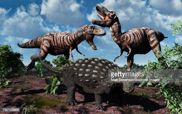an armored ankylosaurus protecting itself from a pair of t-rex dinosaurs. - thyreophora stock illustrations, clip art, cartoons, & icons