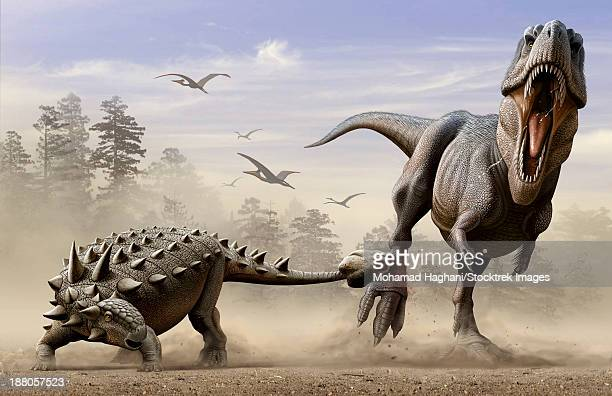 bildbanksillustrationer, clip art samt tecknat material och ikoner med an euoplocephalus hits t-rex's foot by its mace like tail in self-defense. - paleolitico