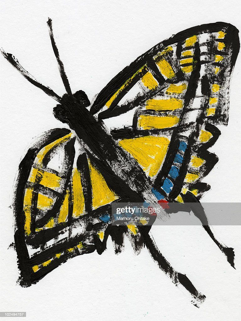 An illustration of a butterfly : stock illustration