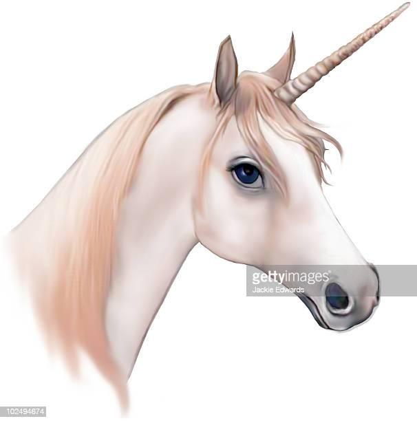 An illustration of a Unicorn