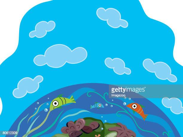 An image of fish swimming in the sea with a crab and starfish on the ocean floor