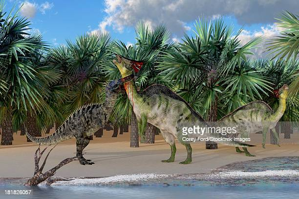 an olorotitan mother is attacked by a suchomimus dinosaur while a juvenile olorotitan honks in alarm. - hadrosaurid stock illustrations, clip art, cartoons, & icons