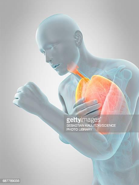ilustrações de stock, clip art, desenhos animados e ícones de anatomy of person coughing, illustration - tossir