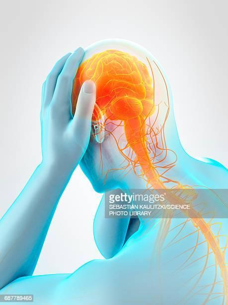 illustrazioni stock, clip art, cartoni animati e icone di tendenza di anatomy of person with headache, illustration - human face