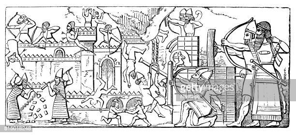 ancient assyrian reliefs - 8th century bc stock illustrations, clip art, cartoons, & icons