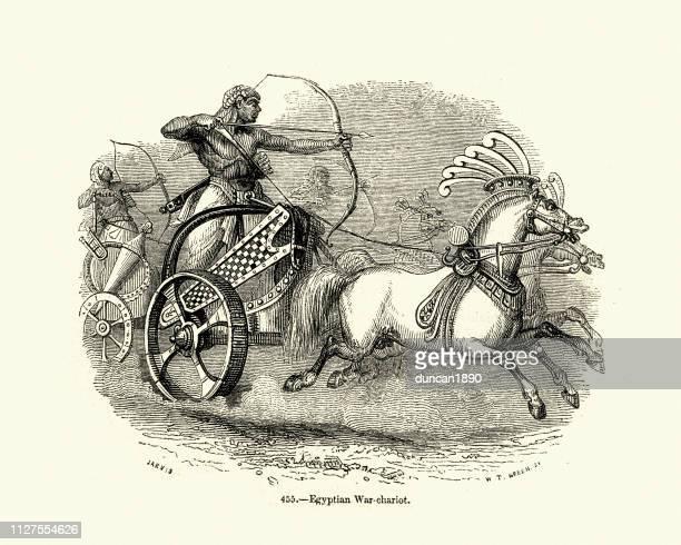 Ancient Egyptian war chariots