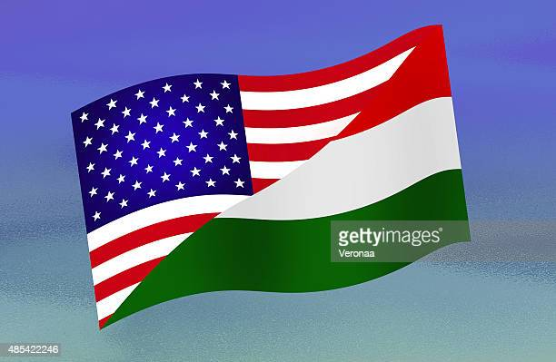 USA and Hungarian flag