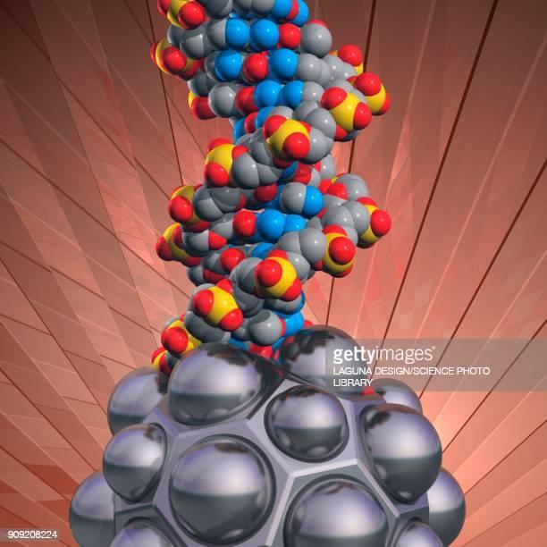 dna and nanomodule, illustration - nanoparticle stock illustrations, clip art, cartoons, & icons