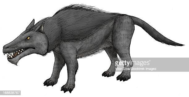 Andrewsarchus, an ungulate mammal from the Eocene epoch.