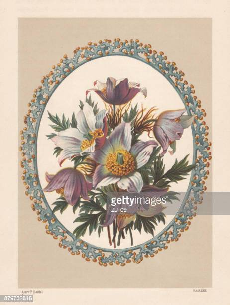 anemone bouquet, lithograph, published in 1883 - ranunculus stock illustrations, clip art, cartoons, & icons