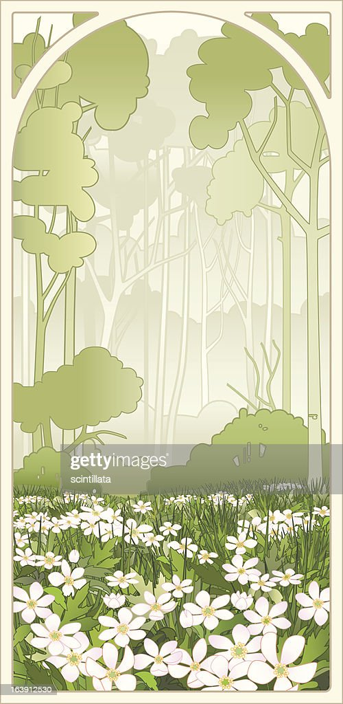 Anemone flowers in the spring forest