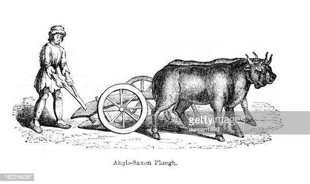 anglo saxon plough - wild cattle stock illustrations, clip art, cartoons, & icons