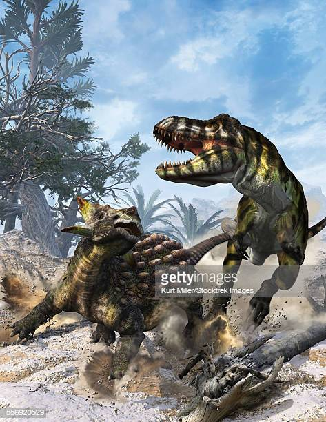 Ankylosaurus hits Tyrannosaurus rex with its clubbed tail in self-defense.