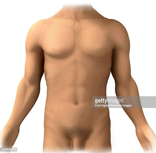 Pantyhose megan sex