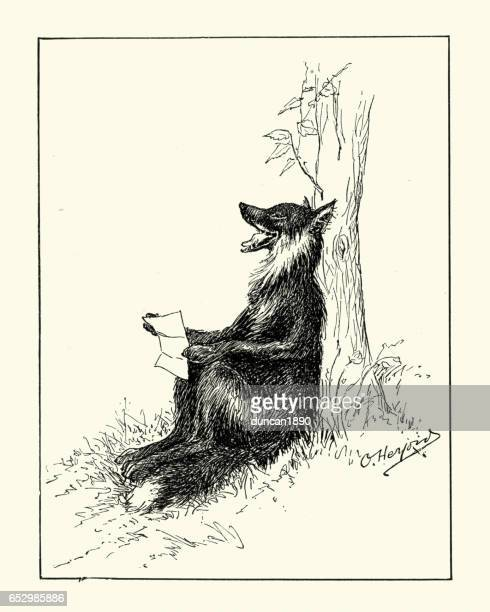 Anthropomorphism - Fox reading a letter