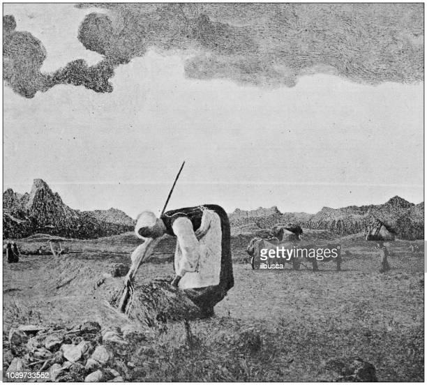 antique art painting illustration: giovanni segantini - landscape countryside - 1900 stock illustrations