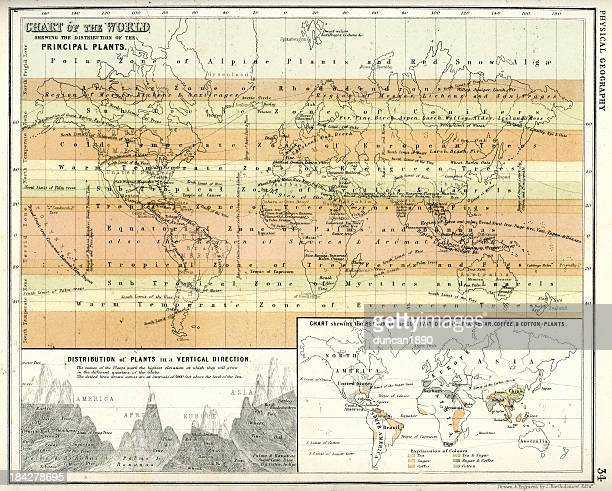 Antique Chart of the World