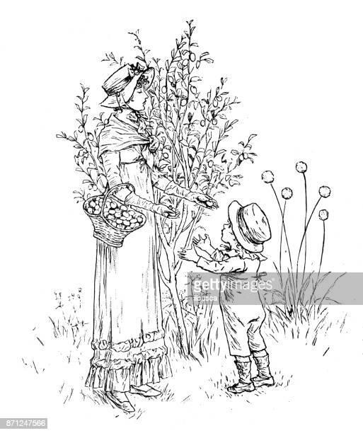 Antique enfants illustrations du livre de l'orthographe: récolte