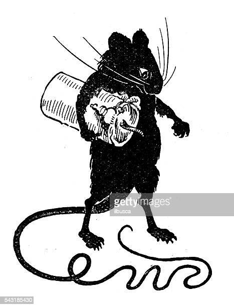 antique children's book comic illustration: rat stealing candle - rat stock illustrations, clip art, cartoons, & icons