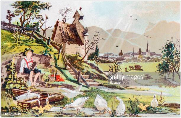 antique color illustration from german children fable book - goose bird stock illustrations
