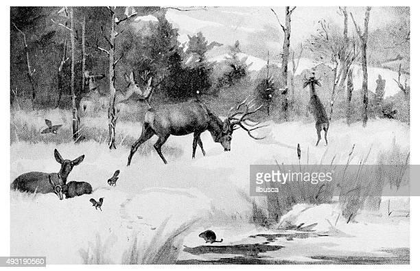 Antique dot print illustration: wildlife and hunters in winter