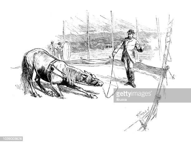 Antique engraving illustration: Circus