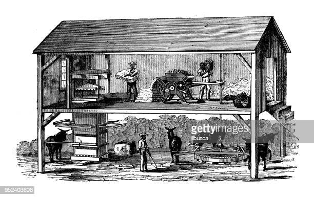 antique engraving illustration: gin house - gin stock illustrations, clip art, cartoons, & icons