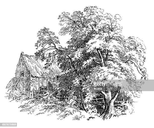 antique engraving illustration: tree and house - {{relatedsearchurl('county fair')}} stock illustrations, clip art, cartoons, & icons