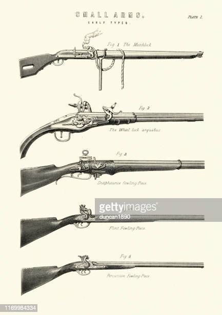 antique firearms, guns, rifles, matchlock, arquebus, fowling piece - rifle stock illustrations