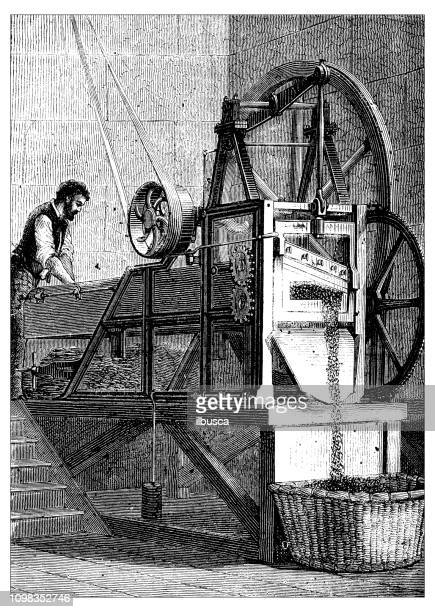 antique illustration engraving of manufacturing industry: tobacco chopping - tobacco crop stock illustrations, clip art, cartoons, & icons