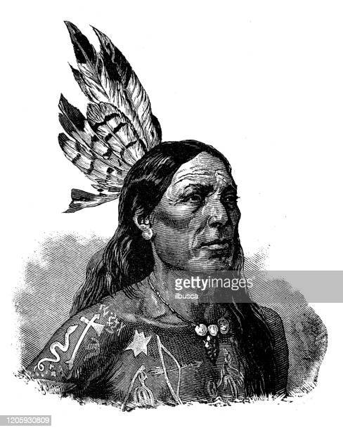 antique illustration: native north american - indigenous north american culture stock illustrations