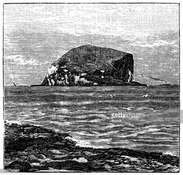 antique illustration of bass rock, scotland - northumberland stock illustrations, clip art, cartoons, & icons