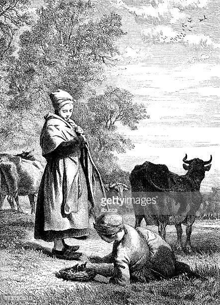 antique illustration of cow herding - mammal stock illustrations, clip art, cartoons, & icons