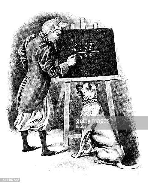 antique illustration of dog learns math - professor stock illustrations, clip art, cartoons, & icons
