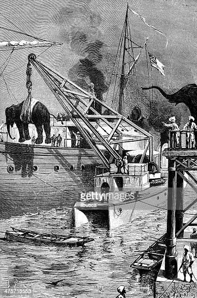 Antique illustration of elephant ship transportation
