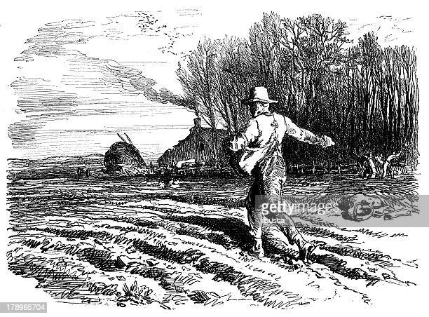 antique illustration of farmer sowing - farmhouse stock illustrations