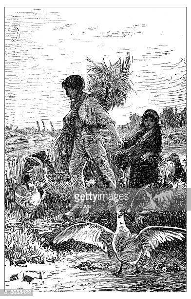 Antique illustration of gleaners working in a field